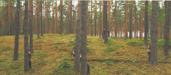 Eesti Metsa- ja Puidutööstuse Liit - Lõuna-Eesti Erametsa OÜ